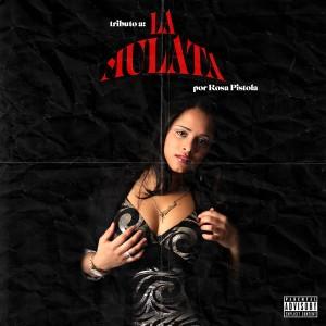 Album Tributo a la Mulata from La Mulata