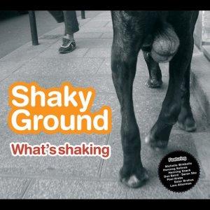 อัลบัม What's Shaking ศิลปิน playground