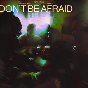Album Don't Be Afraid (feat. Jungle) (Remixes) from Diplo