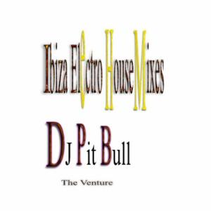 Album Ibiza Electro House Mixes from DJ Pit Bull