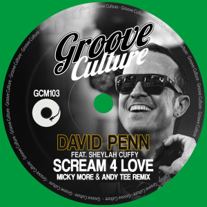 Album Scream 4 Love (Micky More & Andy Tee Remix) from David Penn