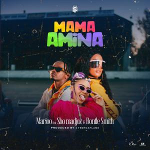 Album Mama Amina from Sho Madjozi