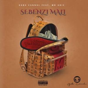 Album Sebenzi Mali from Gaba Cannal
