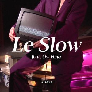 Album Le Slow from Adam