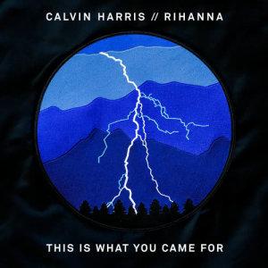 Dengarkan This Is What You Came For lagu dari Calvin Harris dengan lirik