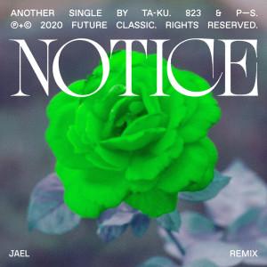 Album Notice (JAEL Remix) from Ta-ku