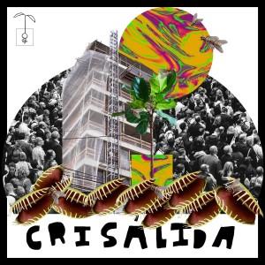 Album Crisálida from Vários Artistas