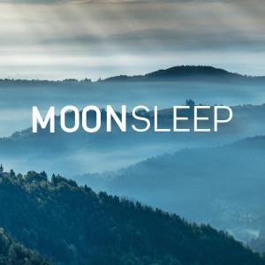Listen to Smaller song with lyrics from Moon Slaapmuziek