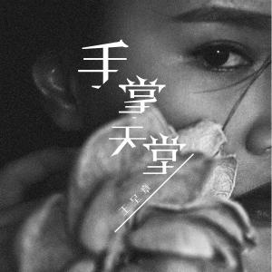 王呈章的專輯手掌天堂
