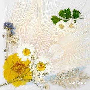 Album WHITE NIGHT from TAEYENG