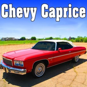 Sound Ideas的專輯Chevy Caprice Sound Effects
