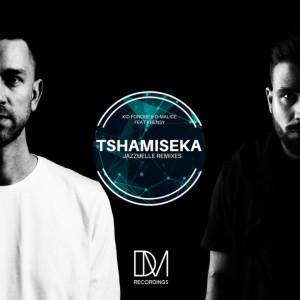 Album Tshamiseka (Jazzuelle Remixes) from D-Malice
