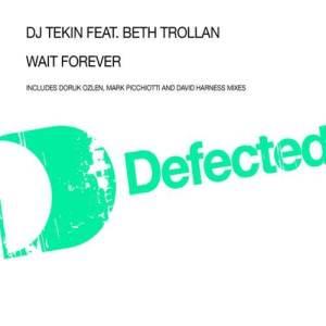 Album Wait Forever (feat. Beth Trollan) from DJ Tekin