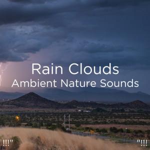 """BodyHI的專輯!!!"""" Rain Clouds Ambient Nature Sounds """"!!!"""