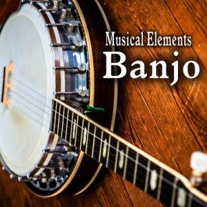 Sound Ideas的專輯Musical Elements – Banjo Sound Effects