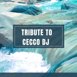 Album tribute to cecco dj (Explicit) from simone lupino