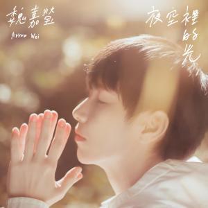 魏嘉瑩的專輯夜空裡的光