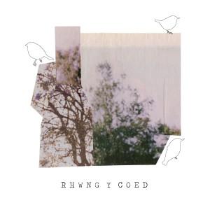 Rhwng Y Coed