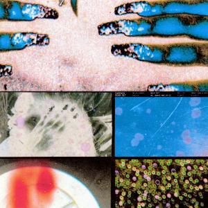 Album Walk Out (Explicit) from Cadenza