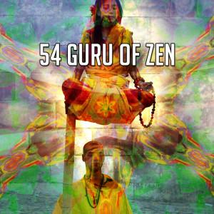 Album 54 Guru of Zen from White Noise Meditation