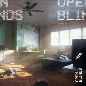 Droeloe的專輯Open Blinds