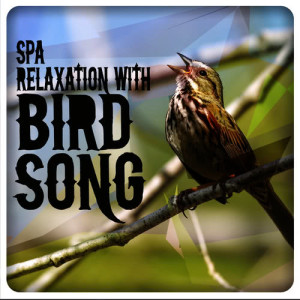 Spa Relaxation with Bird Song