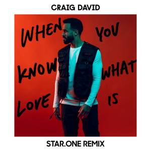 收聽Craig David的When You Know What Love Is (Star.One Remix)歌詞歌曲