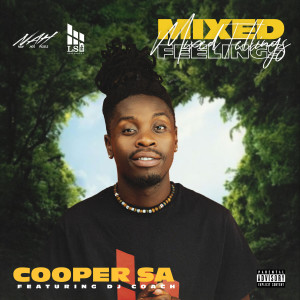 Album Mixed Feelings from DJ Coach