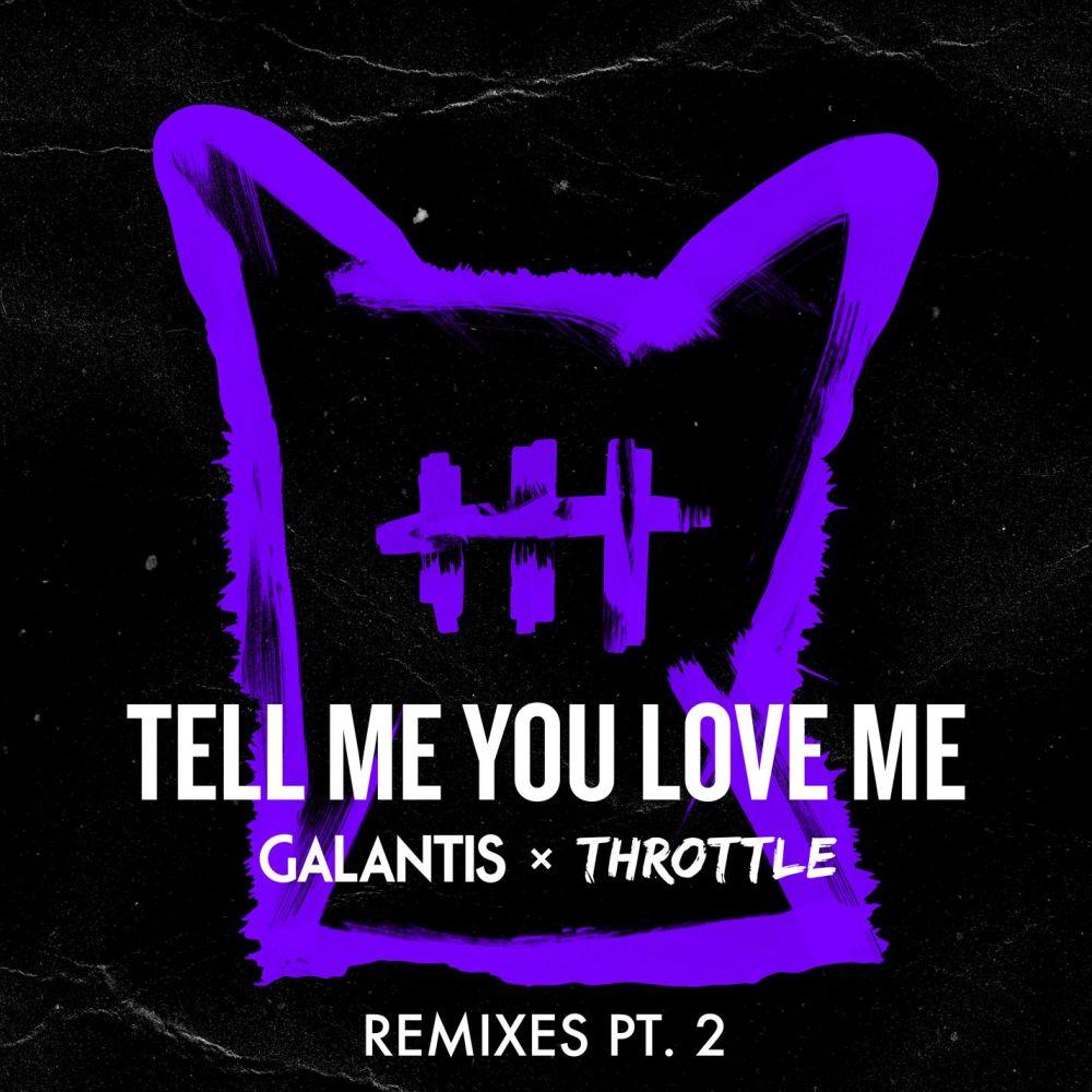 Tell Me You Love Me (Ari Remix) 2018 Galantis; Throttle
