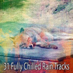Album 31 Fully Chilled Rain Tracks from Rain Sounds & White Noise