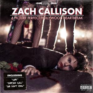 Album A Picture Perfect Hollywood Heartbreak (Explicit) from Zach Callison