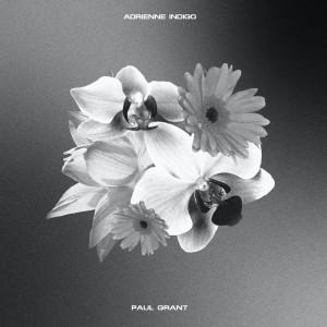 Album Rebirth Instrumentals from Adrienne Indigo
