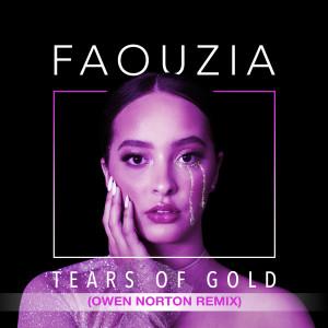 Album Tears of Gold (Owen Norton Remix) from Faouzia