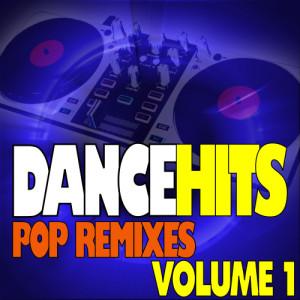 Album DanceHits - Pop Remixes Workout - Volume 1 from Workout Hits Workout