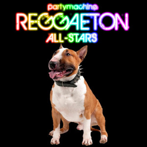 Album Reggaeton All Stars Featuring Pitbull, Don Omar, Wisin & Yandel, Daddy Yankee and More! from Party Machine