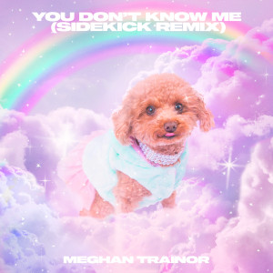 Album You Don't Know Me (Sidekick Remix) from Meghan Trainor