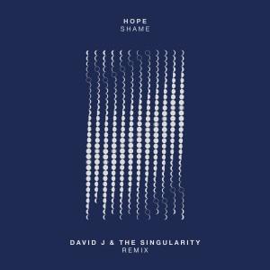 Album Shame (David J & The Singularity Remix) from Hope