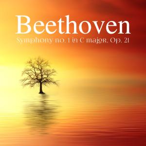 收聽Ludwig van Beethoven的Symphony No.1 Op.21 - II. Andante cantabile con moto in C Major歌詞歌曲
