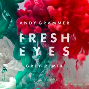 Listen to Fresh Eyes (Grey Remix) song with lyrics from Andy Grammer