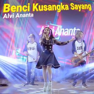 Benci Ku Sangka Sayang dari Alvi Ananta