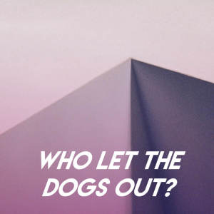 Album Who Let the Dogs Out? from Champs United