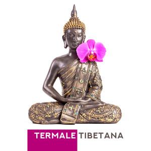 Album Termale tibetana from Meditazione musica zen institute