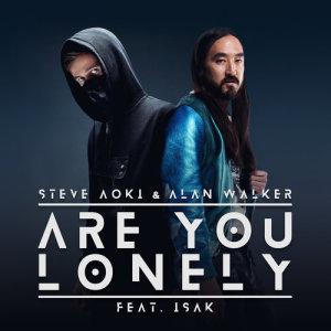 Dengarkan Are You Lonely lagu dari Steve Aoki dengan lirik