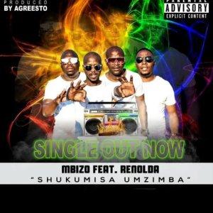 Album Abafana beMbizo from Mbizo