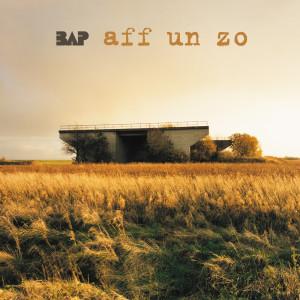 Aff Un Zo 2001 BAP