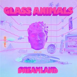 Album Dreamland from Glass Animals