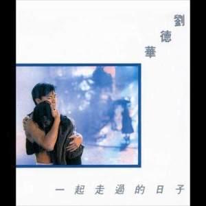 劉德華的專輯傳奇 - 一起走過的日子