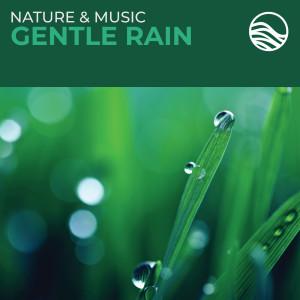 David Arkenstone的專輯Nature & Music: Gentle Rain