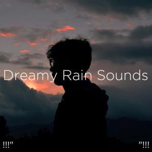 "Album !!!"" Dreamy Rain Sounds ""!!! from Rain Sounds"