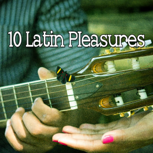 Album 10 Latin Pleasures from Guitar Instrumentals